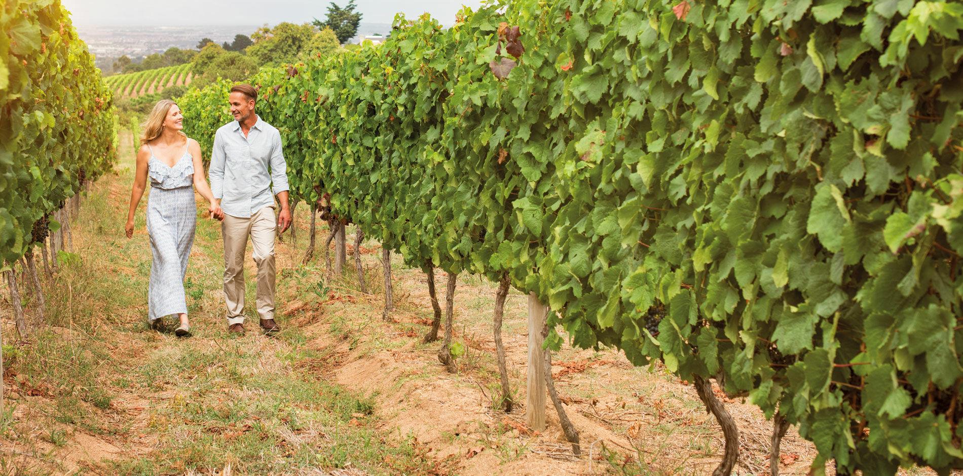 País de vino
